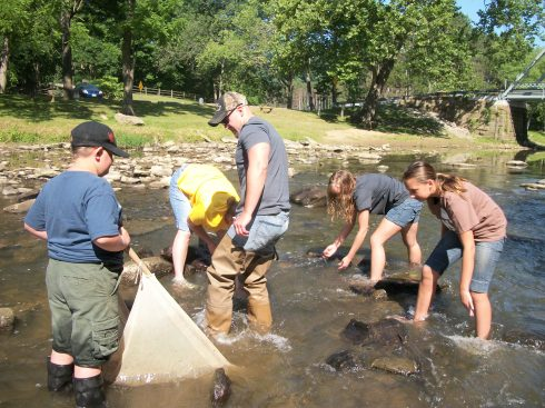 Macroinvertebrate Survey at Beaver Creek